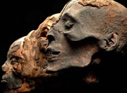 Mummies of the World photo courtesy of Maryland Museum of Science