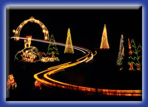 Winter Lights at Seneca Creek Park