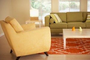 Living Room and Dining Room Organization and Cleaning Tips
