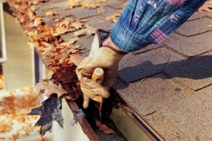 Fall Cleaning outdoors-Photo courtesy of home.howstuffworks.com
